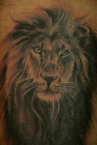 meaning of lion tattoo tattoos what s their meaning plus cool exles