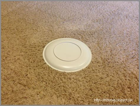 Carpet Stain Baking Soda by Little Brags How To Get Rid Of Pet Stains On Carpet