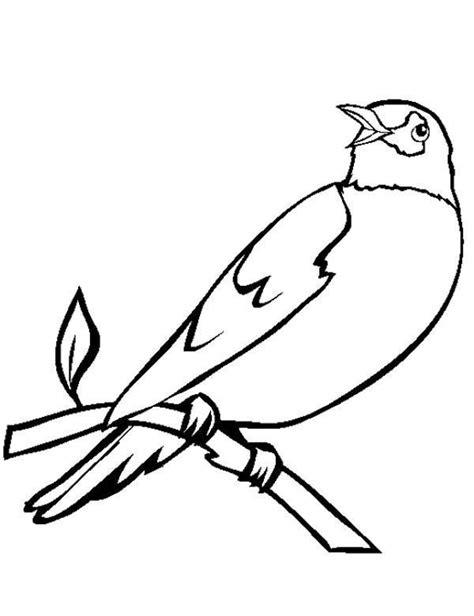 ptaki kolorowanki do druku kolorowanka do druku malowanka kolorowanki