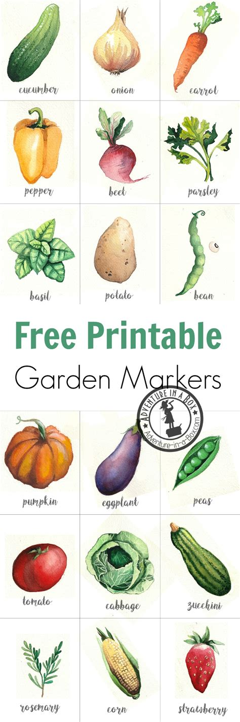 Free Printable Watercolour Garden Markers Adventure In A Box Vegetable Garden Labels
