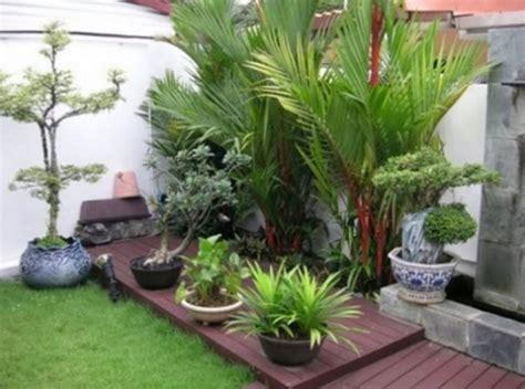 rekomendasi  menata tanaman hias  depan rumah