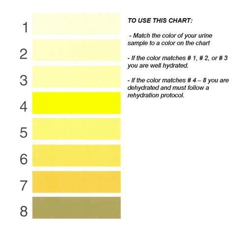 urine color chart sport nutrition water bodybuilding wizard