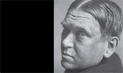 Hl Mencken Essays by Hl Mencken Essays Brown S Notes And Essays H L Mencken At His Most Vitriolic Ayucar