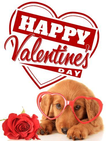 happy valentines day animals 65 best s day cards images on