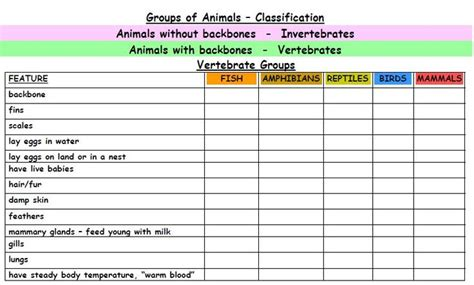 printable animal classification chart animal classification printables classification of