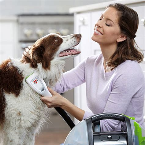 bissell bath portable grooming system barkbath 1844a bissell cleaner