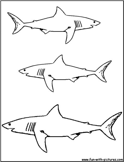 coloring page great white shark great white shark pictures to print free az coloring pages