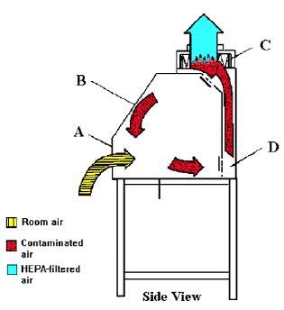 biosafety cabinet types fanti biosafety cabinet type 1 fanti