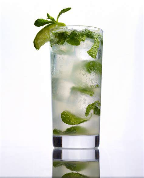 mojito recipe dishmaps