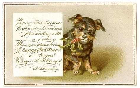 printable christmas cards dogs antique christmas images dog with holly the graphics fairy