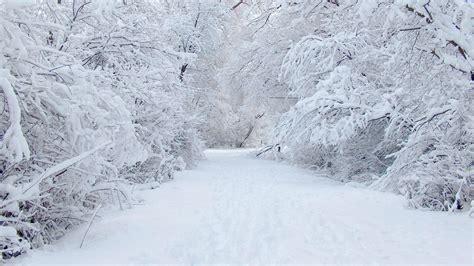 frozen winter wallpaper winter transforminglifenow