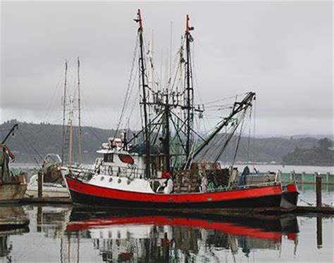 commercial fishing boat cost oregon coast commercial fishing boat take me away for a