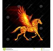 Fire Pegasus Stock Photography  Image 34608512