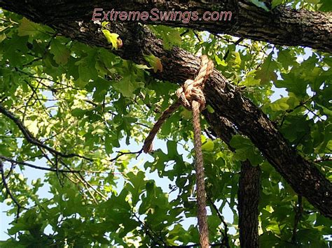 rope knots for tree swing extreme tree swings round disc plank hickory walnut pine