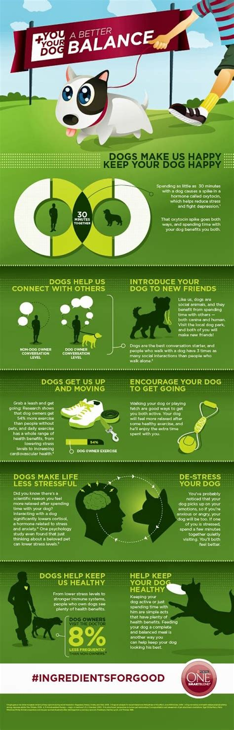 7 Benefits Of Owning A Pet by 114 Best Images About The Benefits Of Pet Ownership On