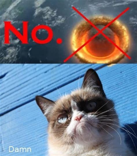 No Meme Cat - no cat meme cat planet cat planet