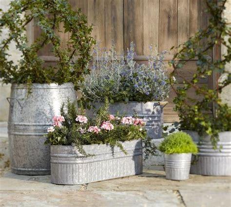 1000 ideas about galvanized planters on pinterest