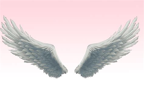 on angel wings mmd absolute best angel wings by amiamy111 on