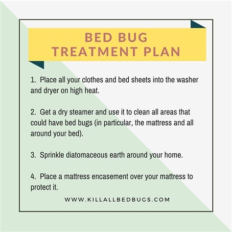 bed bug treatments that work what to do after bed bug treatment looking for signs of