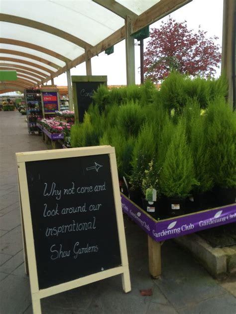 garden centre layout design wyevale bridgemere garden centre garden retail