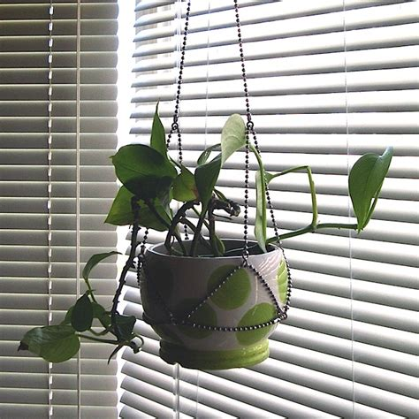 Make Plant Hanger - how to plant hangers from chain make