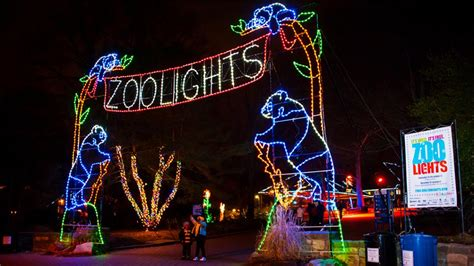 dallas zoo lights america s wildest zoo lights holidays travel channel