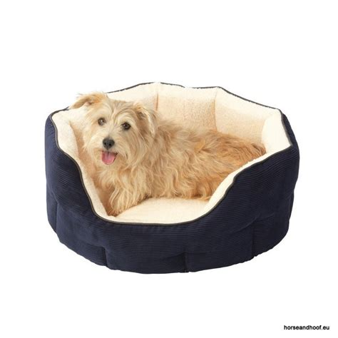 house of paws house of paws memory foam oval snuggle bed