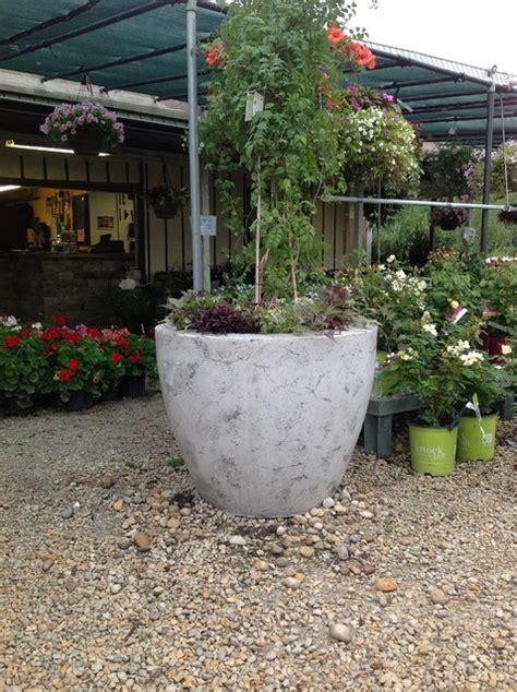 large cement planters large concrete drum planters modern indoor pots and planters chicago by elemental