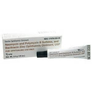 antibiotic ointment for dogs antibiotic eye ointment b n p vetrxdirect