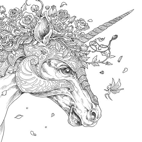 coloring pages of unicorns for adults once upon a time mythomorpia happened kerby rosanes
