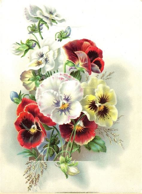 vintage images vintage floral images picmia