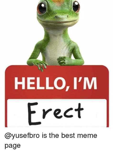 Best Meme Page - hello i m erect is the best meme page hello meme on sizzle