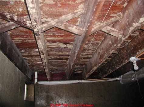 mildew in basement auto forward to correct web page at inspectapedia