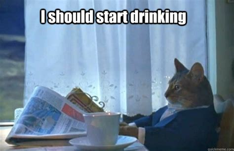 I Should Buy A Boat Meme - i should start drinking sophisticated cat quickmeme