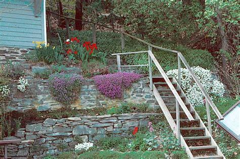 1000 images about steep garden on pinterest