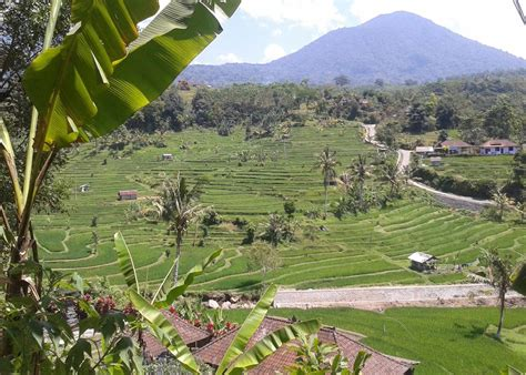 visit ubud   trip  indonesia audley travel