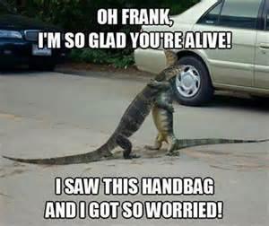 Alligator Meme - egorich ego memes when alligators reunite