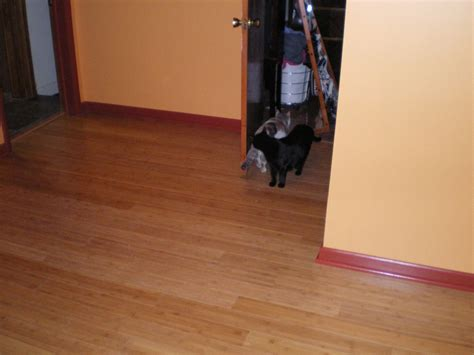 Bamboo Floor Cleaning by Cleaning Bamboo Flooring Bad News For House Cleaners And
