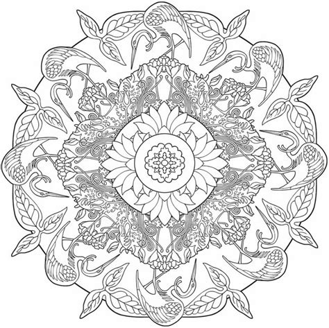 nature mandalas coloring book by thaneeya mcardle nature mandalas coloring book thaneeya mcardle book in