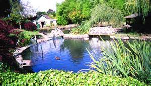 file sunny walter pillings pond jpg wikimedia commons