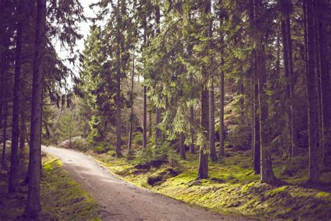 hike themes hd backgrounds archives public domain images free stock
