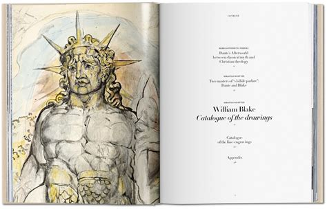 william dante s comedy the complete drawings books william the drawings for dante s comedy