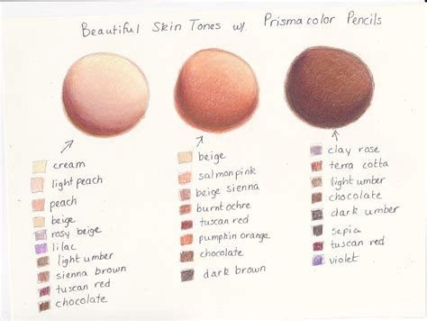 what is my skin color my prismacolor skin tone color palette by