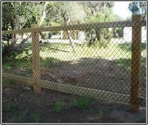 Cheap Backyard Fence Ideas Best 25 Cheap Fence Ideas Ideas On Cheap Privacy Fence Fencing And Fence Building