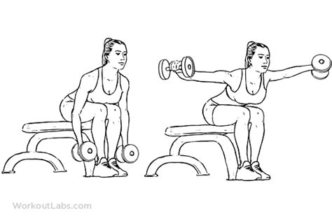 bent over lateral raises on incline bench seated rear lateral dumbbell raise exercise pinterest exercise search and