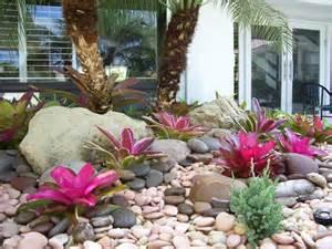 Florida Rock Garden Tropical View Landscape