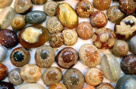 Batu Akik Iii di sumut batu akik gambar naga dijual 18 miliar