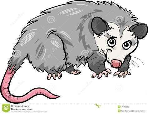 opossum clipart possum clipart www imgkid the image kid has it