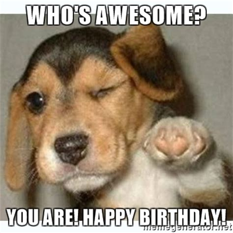Birthday Dog Meme - happy birthday dog meme