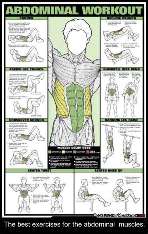 best 25 abs ideas on exercise no equipment ab workout and workout plan